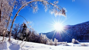 Winter-snow-mountains-and-trees-white-scenery-dazzling-sunshine_2560x1440